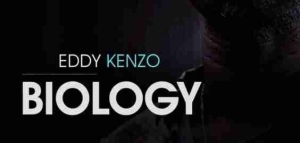 Eddy Kenzo - The Heat